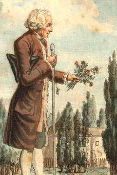Rousseau herborisant