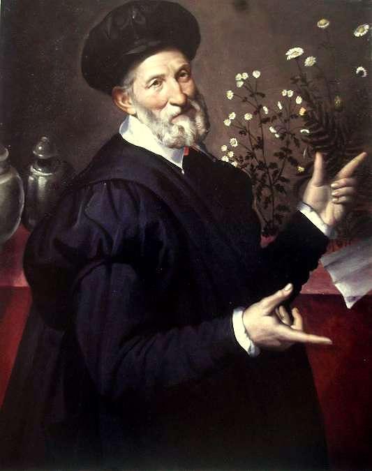 Bartolomeo Passerotti. Portrait d'un botaniste. Vers 1580. Huile sur toile. 101 x 82, 2 cm. Galleria Spada. Rome