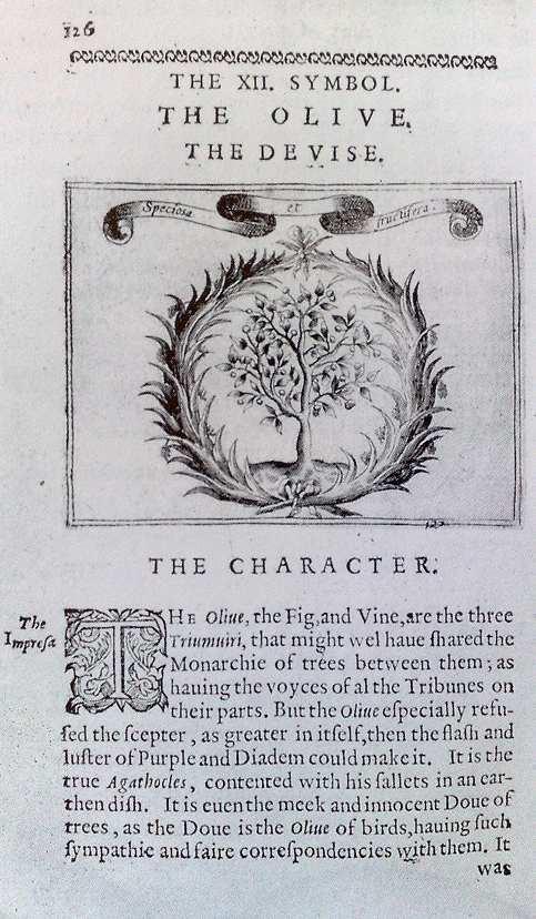 Cl. Geoffroy : The Olive The Devise. Tiré de Jean-Marc Chatelain. Livre d'emblèmes et de devise (1993)